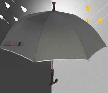 Cane umbrella.png