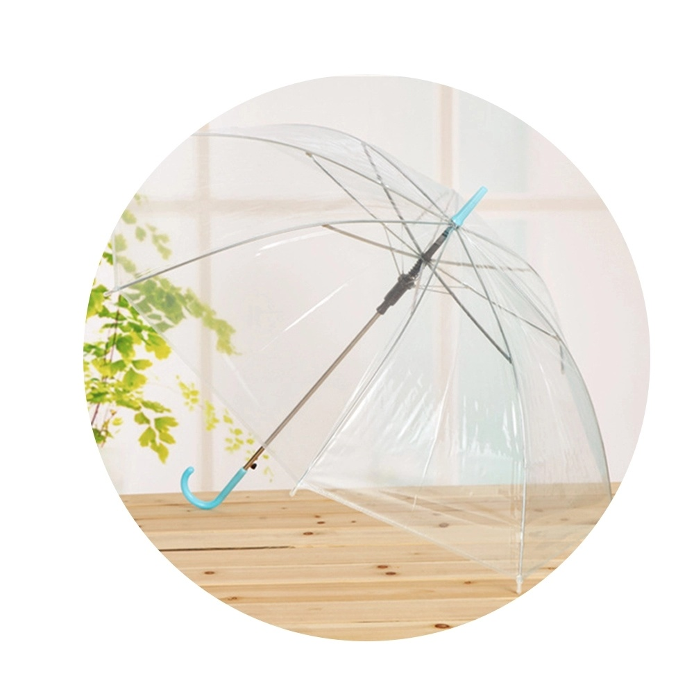 Long Handle Color Transparent Umbrella With Factory Price